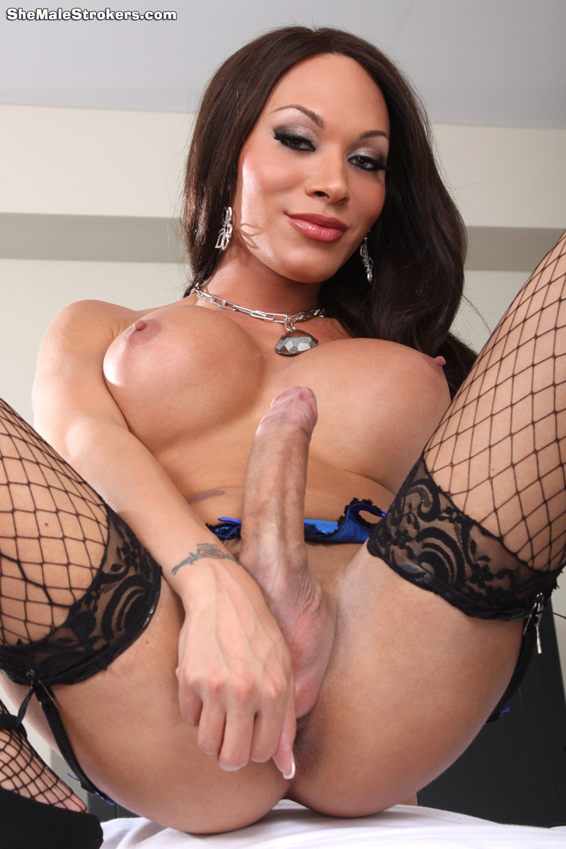 shemale Big dick cock tranny